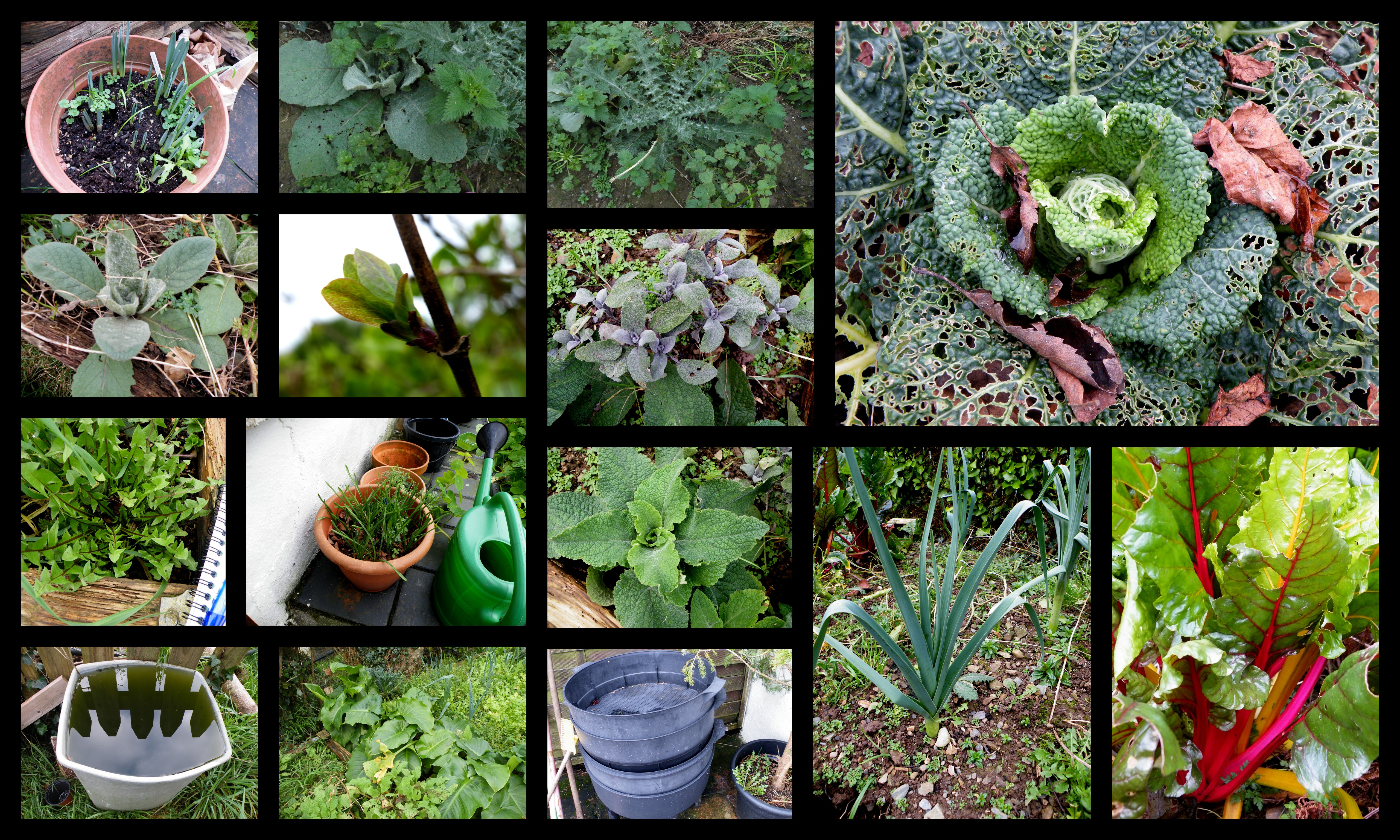 taking stock of garden winter 2018
